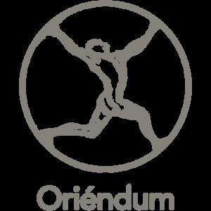 Oriéndum praktijk Leeuwarden